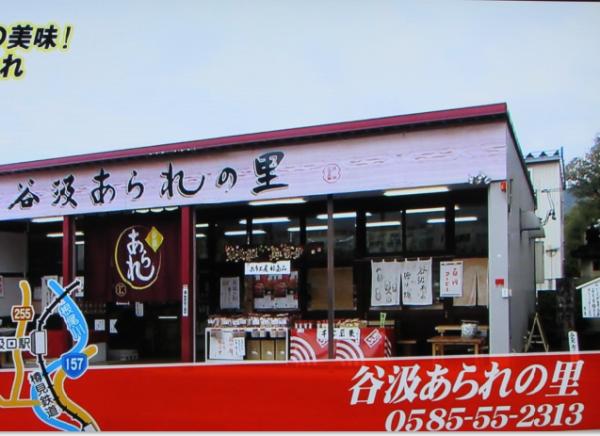 樽見鉄道19