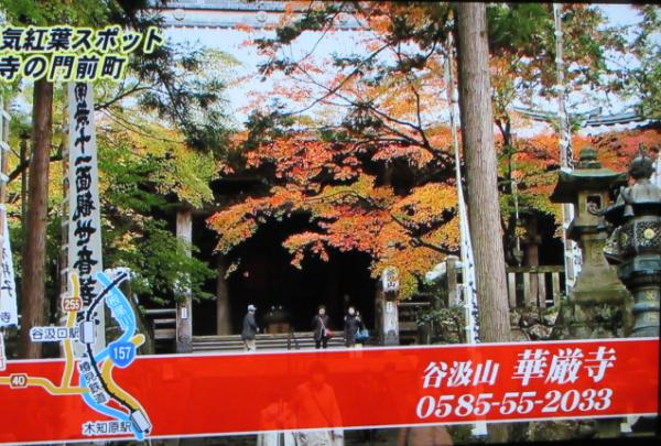 樽見鉄道15