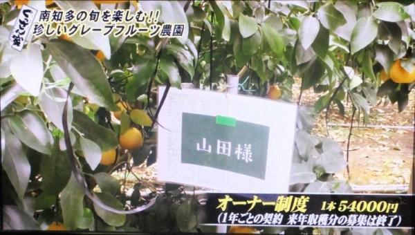 萬秀フルーツ5