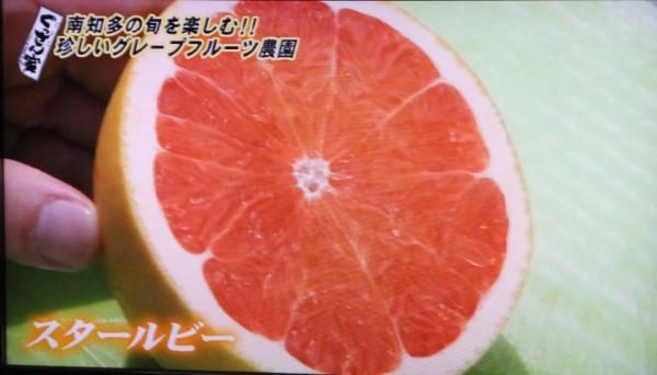 萬秀フルーツ6