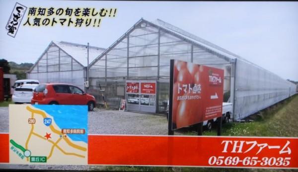THfarm01
