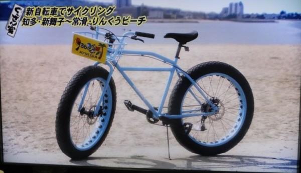 知多半島サイクリング02