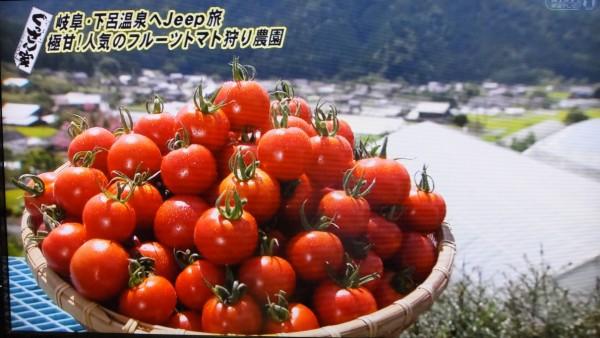 栃本農園3