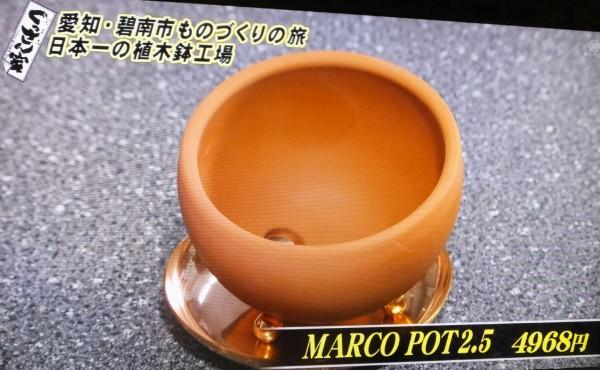 井澤製陶9