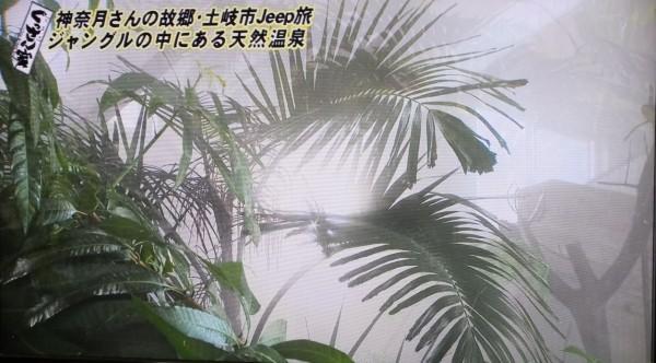 八勝園湯元館3